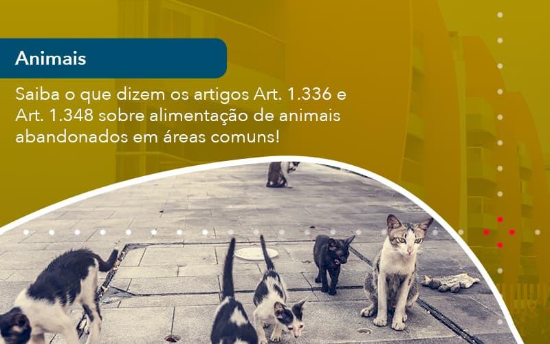 Saiba O Que Dizem Os Artigos Art 1 336 E Art 1 348 Sobre Alimentacao De Animais Abandonados Em Areas Comuns (1)